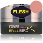 brillbird cover flesh gel
